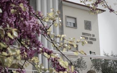 The Sacred Heart of Mary School – Fatima